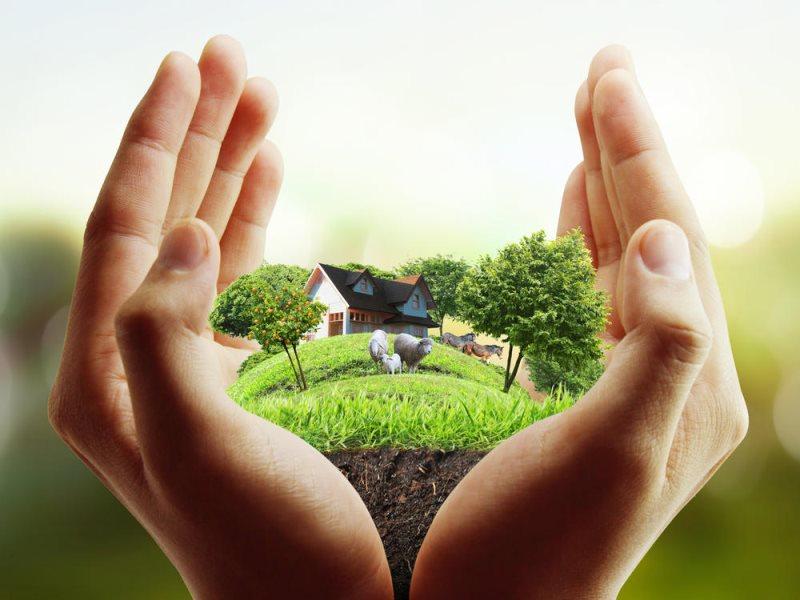 На заметку: как не нарушить требования земельного законодательства